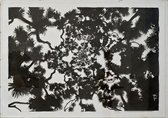 Untitled, 2007, graphite on cut paper, 150 x 210 cm